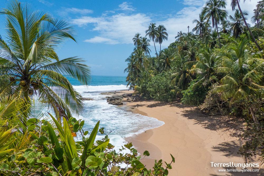 Costa rica archivos terres llunyanes for Vuelos baratos a costa rica